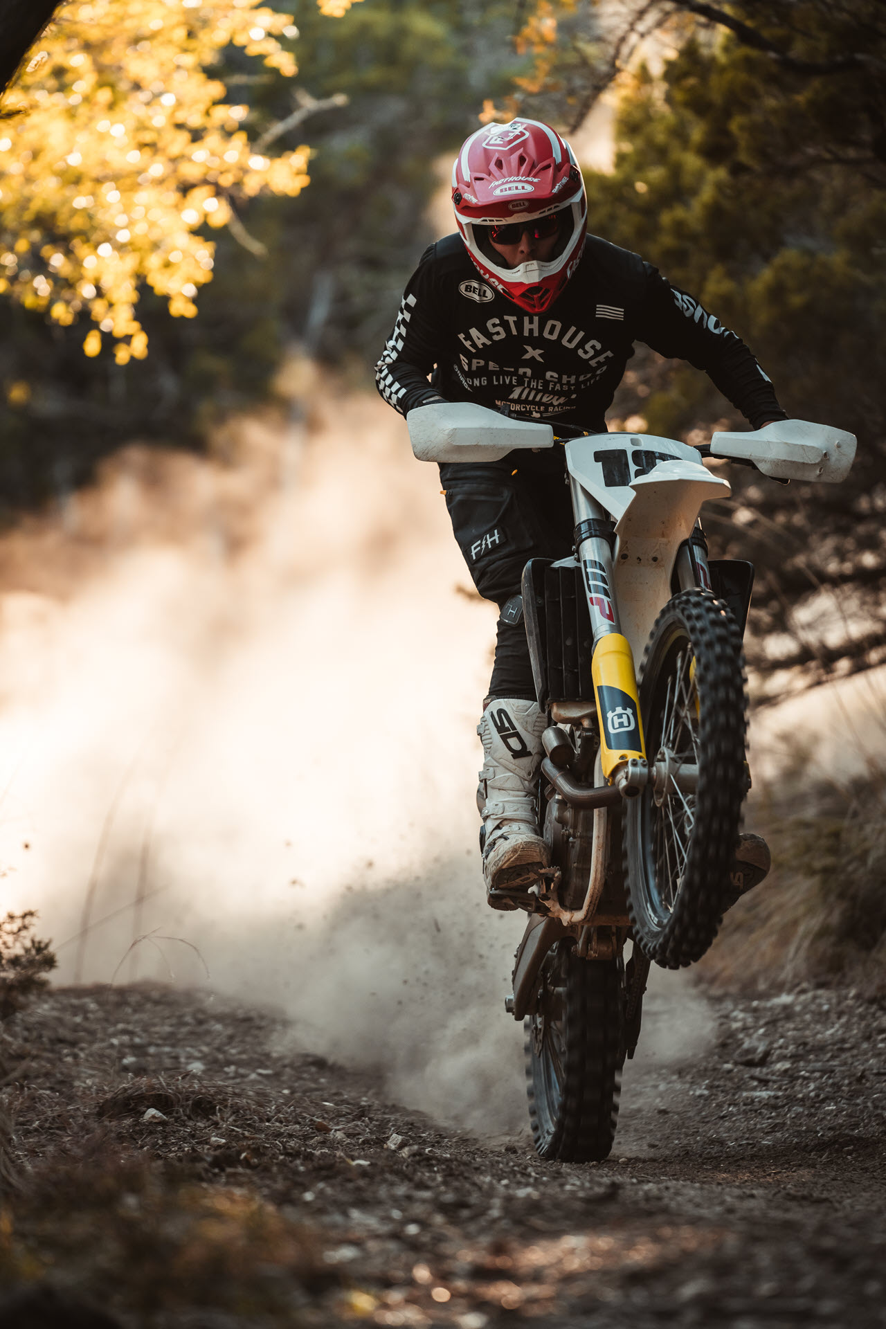 Wheelie Through the Woods